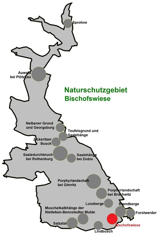 NSG Bischofswiese
