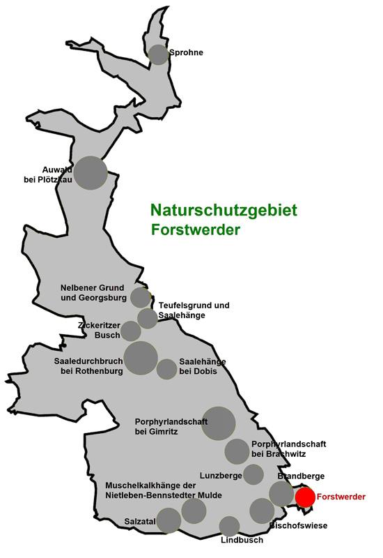 NSG Forstwerder