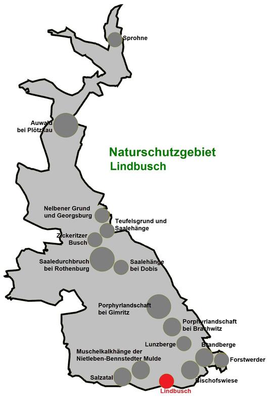 NSG Lindbusch