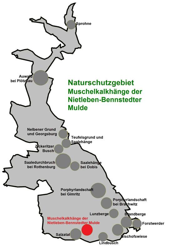 NSG Muschelkalkhänge der Nietleben-Bennstedter Mulde