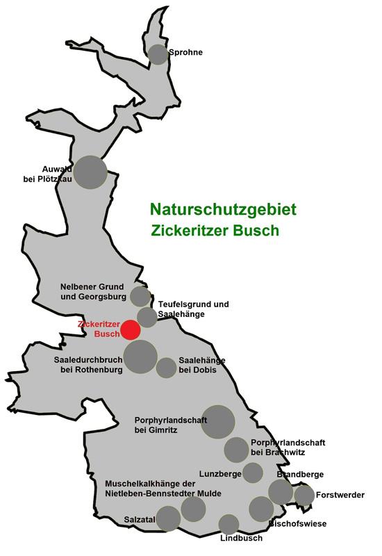 NSG Zickeritzer Busch