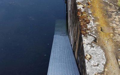 Amphibientreppe am Löschteich in Wils