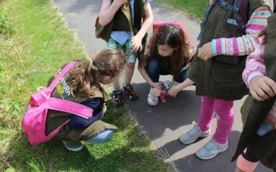 Entdeckerwesten-Wanderung mit einer Kindergartengruppe der Kita Nesthäkchen